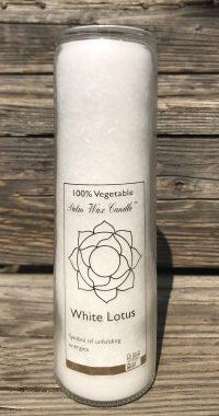 White Lotus Fragrance Free Jar Candle | Shasta Rainbow Angels